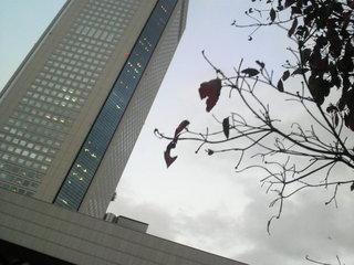 2011111616390000.jpg
